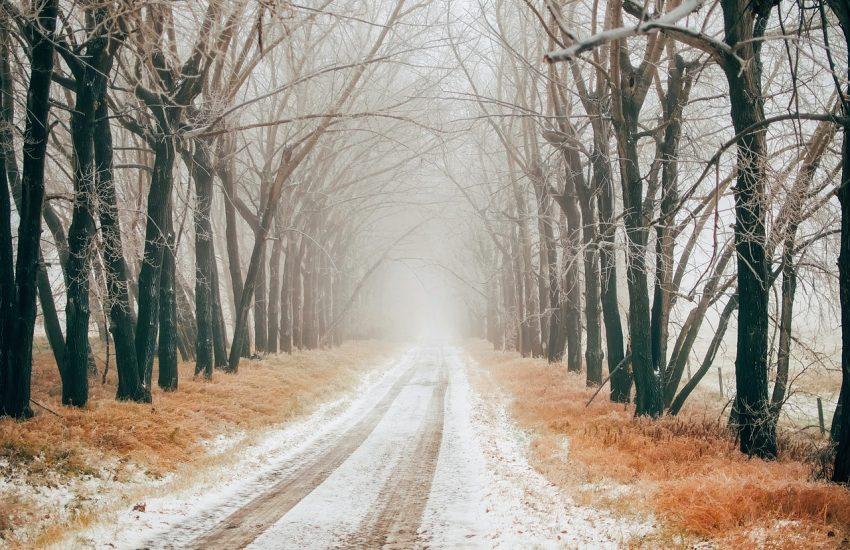 Markowe zimowe opony